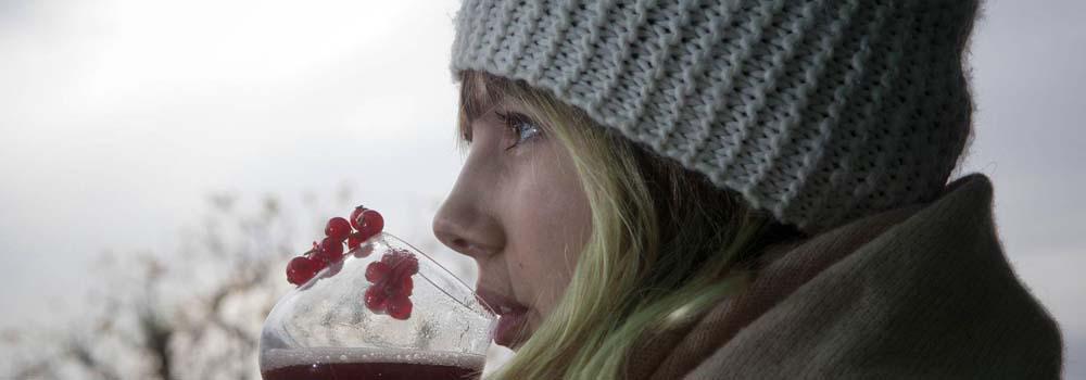 Alimentos para el invierno. Los mejores