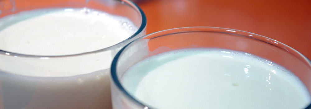 Comida curativa - Alimentos que curan - Yogur