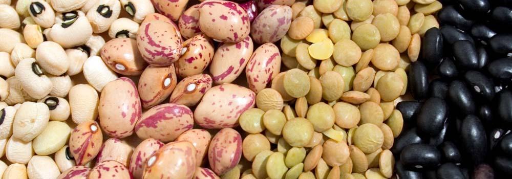 Comer más legumbres es beneficioso para cuerpo y mente