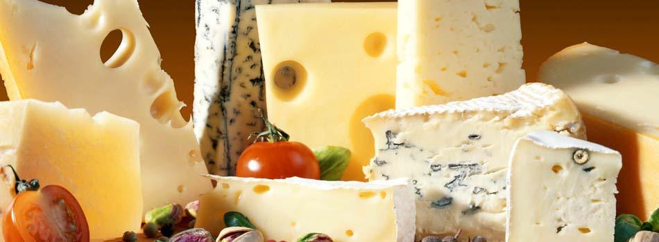 Mitos de las dietas. Varios tipos de quesos